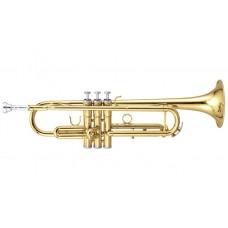 Труба Maxtone TTC60L2