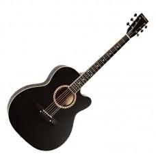Гитара акустическая Trembita Leoton L-01 BK